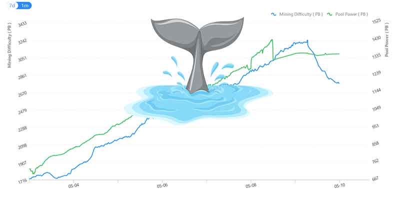 hpool pool size with a whale illustrating the drop of power
